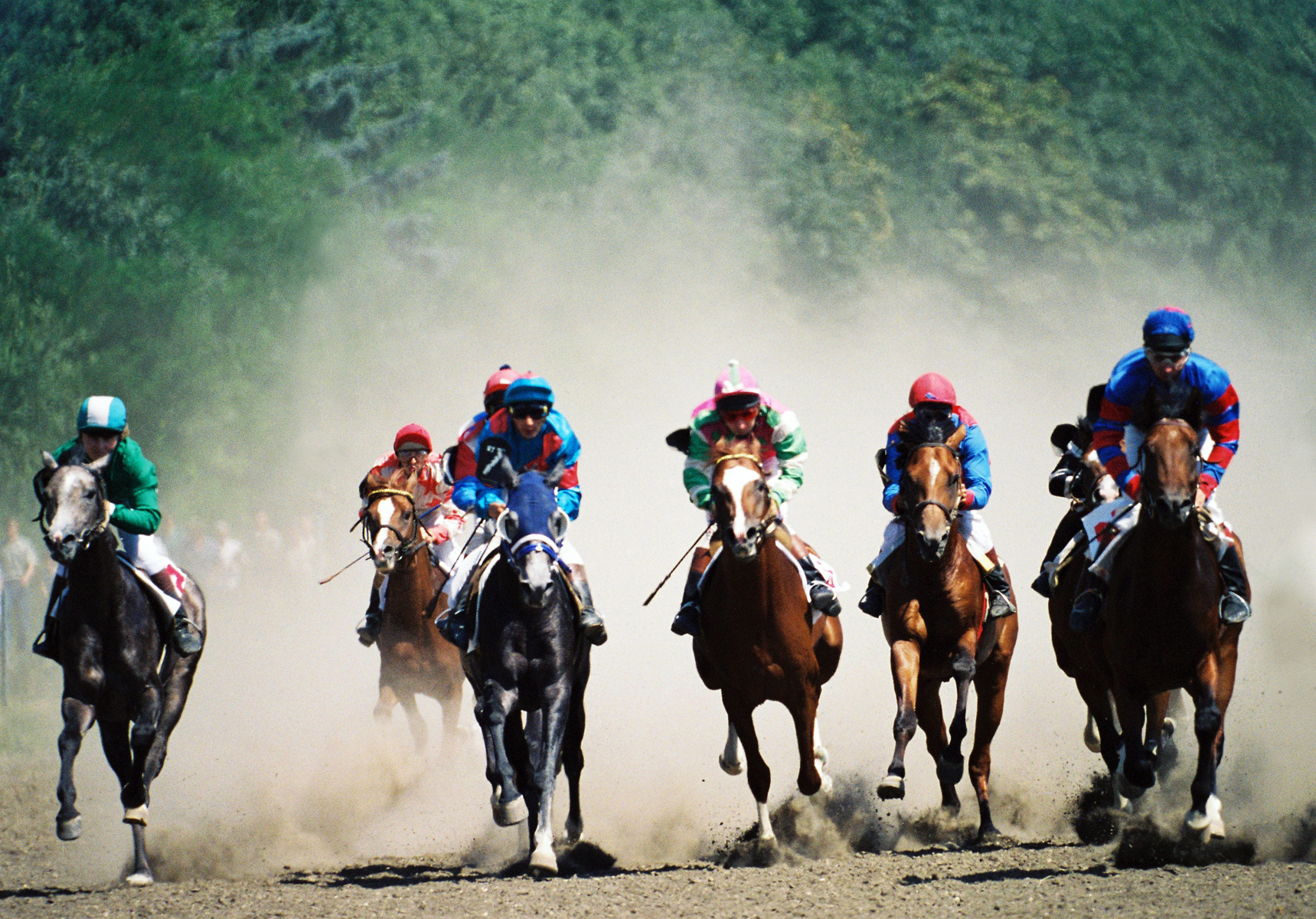 The best tricks used to bet on the horse racing
